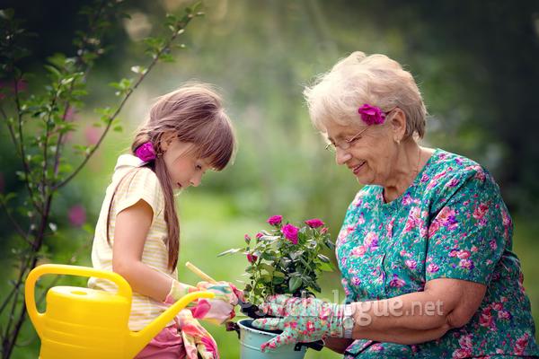 Les leçons de vie de nos grands-mères