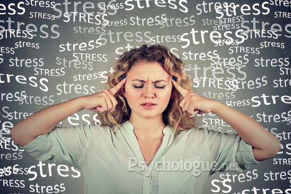 Quand le stress séquestre le cerveau